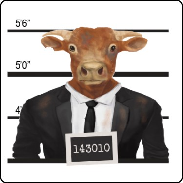 Cow Mugshot T-Shirt